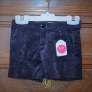 Shorts In cotton velvet  (Navy)